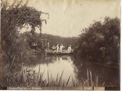 Foto Albumina Giovanni Crupi Anapo Papirus 1890 Ca - Foto