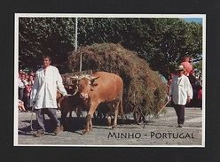 Postcard BULLS OXEN CART MINHO PORTUGAL Farmers Agriculture Z1 - Postcards