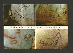 Pc PRE HISTORY ART RUPESTRE CUEVA  PILETTA SPAIN Horse Goat Goats Chèvres Z1 - Postcards