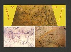 Pc PRE HISTORY ART RUPESTRE CUEVA PILETTA SPAIN Horse Cow Goat Goats Chèvres Z1 - Postcards