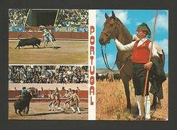 HORSES HORSE BULLFIGHT PORTUGAL RIBATEJO SANTAREM VILA FRANCA DE XIRA CHEVAUX Z1 - Postcards