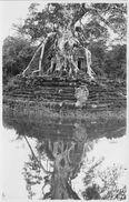 ¤¤  -  Carte-Photo Non Située   -  CAMBODGE  ??  -  Palais, Statue  -  ¤¤ - Kambodscha