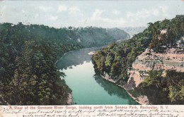 New York Rochester View Of The Genesee River Gorge Looking North