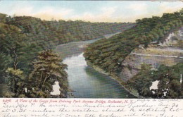 New York Rochester View Of The Gorge From Driving Park Avenue Br