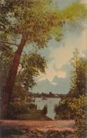 New York Rochester Scene In Seneca Park