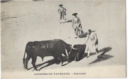 Courses De Taureaux - Estocade - Corrida