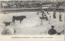 Courses De Taureaux - Le Picador - Corrida