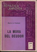 LA MORA DEL DEUDOR LIBRO AUTOR MARIO A. PIANTONI LERNER EDICIONES AÑO 1978 154 PAGINAS - Recht En Politiek