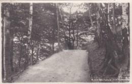 Karlsbad - Jubiläumsweg (220) * 27. V. 1927 - República Checa