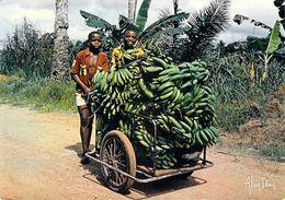 Afrique >Cameroun ? Retour à La Bananeraie  (enfants Bananes) *PRIX FIXE - Cameroun