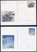 CROATIA  1998-99  Postal Stationery Cards 1.40k, 1.45 K. Plants Unused.  Michel P10-11 - Croatia
