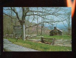 CPM Etats Unis PIONEER CABIN Appalachian Mountains - Etats-Unis