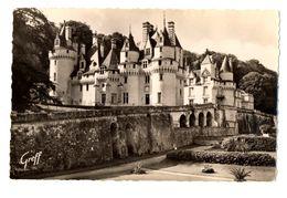 CPSM 37 Indre Et Loire Usse Le Château - France