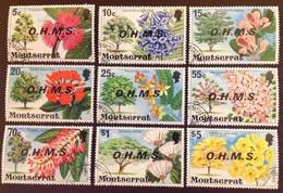 Montserrat 1976 Officials Flowers Set Fine Used - Non Classificati