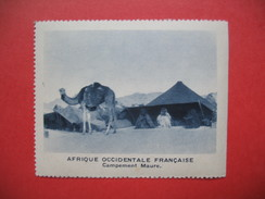 Chromo Image Vignette AOF Afrique Occidentale Française - Campement Maure  ( 6.5 X 7.5 Cm) - Trade Cards