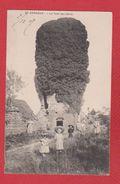 St Gengoux  -- La Tour De Lierre - Altri Comuni