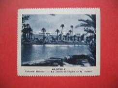 Chromo Image Vignette Algérie  - Colomb Bechar - Le Cercle Militaire Et La Rivière  -  6.5 X 7.5 Cm - Chromos