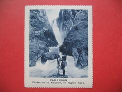 Chromo Image Vignette Cameroun - Chutes De La Koudini, En Région Baya -  6.5 X 7.5 Cm - Chromos