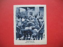 Chromo Image Vignette Cameroun - Gorille Femelle -  6.5 X 7.5 Cm - Chromos