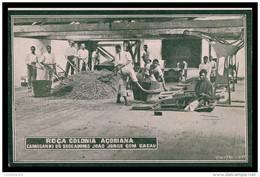 """S. TOMÉ E PRÍNCIPE-Roça Colonia Açoriana-Carregando Os Seccadores S. Jorge Com Cacau (Ed. """"A Ilustradora"""") Carte Postale - Sao Tome And Principe"""
