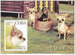 Cuba Hb 245 - Blocks & Sheetlets