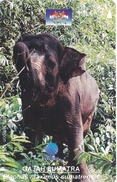 TARJETA DE INDONESIA DE UN ELEFANTE (ELEPHANT) - Indonesia