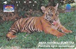 TARJETA DE INDONESIA DE UN TIGRE (TIGER) - Indonesia