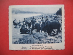 Chromo Image Vignette  Indochine - Laos -Province Luang-Prabang Paklay -La Baignade Des Elephants -  6.5 X 7.5 Cm - Chromos