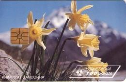 TARJETA TELEFONICA DE ANDORRA. (043) - Andorra