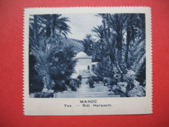 Chromo Image Vignette  Maroc - Sidi Harazem -   6.5 X 7.5 Cm - Chromos