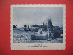 Chromo Image Vignette  Maroc - La Caravane Au Repos -   6.5 X 7.5 Cm - Chromos