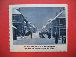 Chromo Image Vignette  Saint-Pierre Et Miquelon - Une Rue De Saint-Pierre En Hiver -  6.5 X 7.5 Cm - Chromos