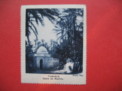 Chromo Image Vignette  Tunisie - Oasis De Nephta -   6.5 X 7.5 Cm - Chromos