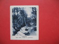 Chromo Image Vignette  Tunisie - Une Oasis, Rivière Et Palmiers  -   6.5 X 7.5 Cm - Chromos