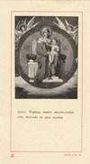 7382.    Santino Holy Card Ricordo Prima S. Messa Pontificio Seminario Pio XI - S. Severino M. 1929 - Devotion Images