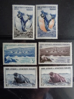 T.A.A.F. 1956 Y&T N° 2 à 7 ** -  FAUNES - French Southern And Antarctic Territories (TAAF)