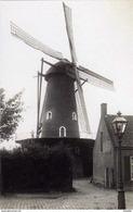 TILBURG (N.Br.) - Molen/moulin - De Verdwenen Molen Van Broekhoven Of 'Het Vertrouwen'. Fraai !! - Tilburg