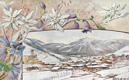 BORNO - CARTOLINA  VIAGGIATA  1913- - Italia