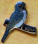 120) .....ORNITHOLOGIE...OISEAUX..//.......S O R P ......Société Ornithologique De La Région Parisienne - Pin's
