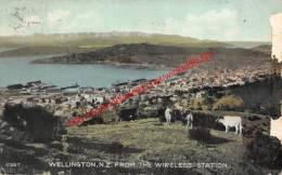 Wellington - From The Wireless Station - Nouvelle-Zélande