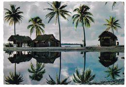 TAHITI - Paysage Des Tuamutu - Atoll De Ana - Polynésie Française