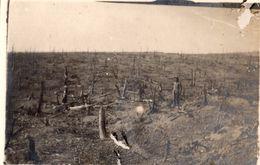 PHOTO FRANÇAISE - CONTRE PENTE DU MONT HAUT PRES DE MORONVILLIERS MONTS DE CHAMPAGNE MARNE 1914 1918 - 1914-18