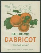 Rare // Etiquette// Eau De Vie D'Abricot Saxon, Valais, Suisse - Fruit En Groenten
