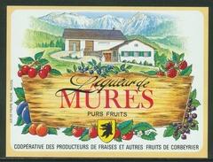 Rare // Etiquette // Liqueur De Mûres,Coopérative Des Producteurs, Corbeyrier,Vaud, Suisse - Fruits & Vegetables
