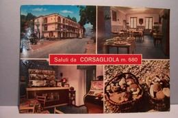 MONTALDO   ( Mondovi ) -Fraz. Corsagliola  -Alberto  Amici    - ( Pas De Reflet Sur L'original ) - Cuneo