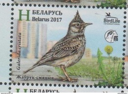 BELARUS, 2017, BIRDS, BIRD OF THE YEAR, CRESTED LARK, 1v - Uccelli