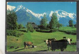 SAINT GERVAIS LES BAINS // Lot26 - Saint-Gervais-les-Bains