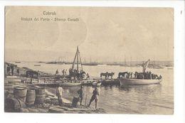 18292 -  Libye Tobruk Veduta Del Porto Sbarco Cavalli 07.05.1912 - War 1914-18