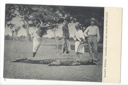 18297 - Somalia Italiana Coccodrillo Ucciso Sulle Sponde Dell'Uebi Scebelli - Somalie