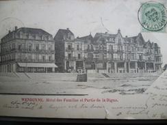 WENDUINE WENDUYNE  Hôtel Familles Et Digue (1900) - Wenduine
